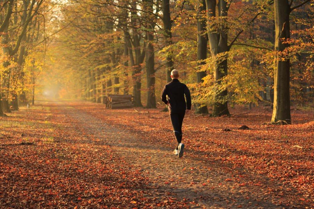 Corsa per principianti: come allenarsi correttamente